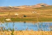 RURAL LANDSCAPE SUMMER.Between Apulia and Basilicata: Lake Basentello.Poggiorsini (ITALY)
