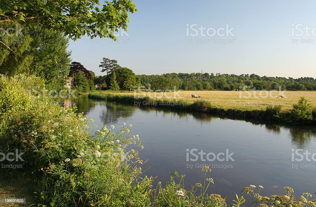 Summer's Evening royalty-free stock photo
