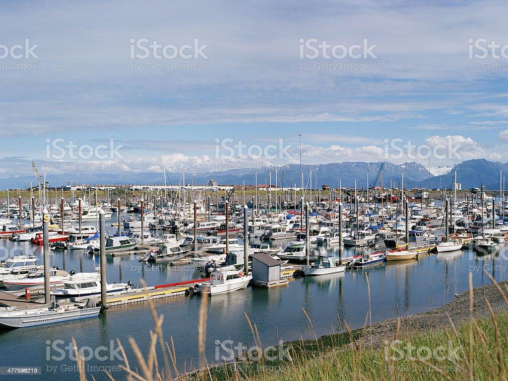 Summertime, Homer, Alaska stock photo