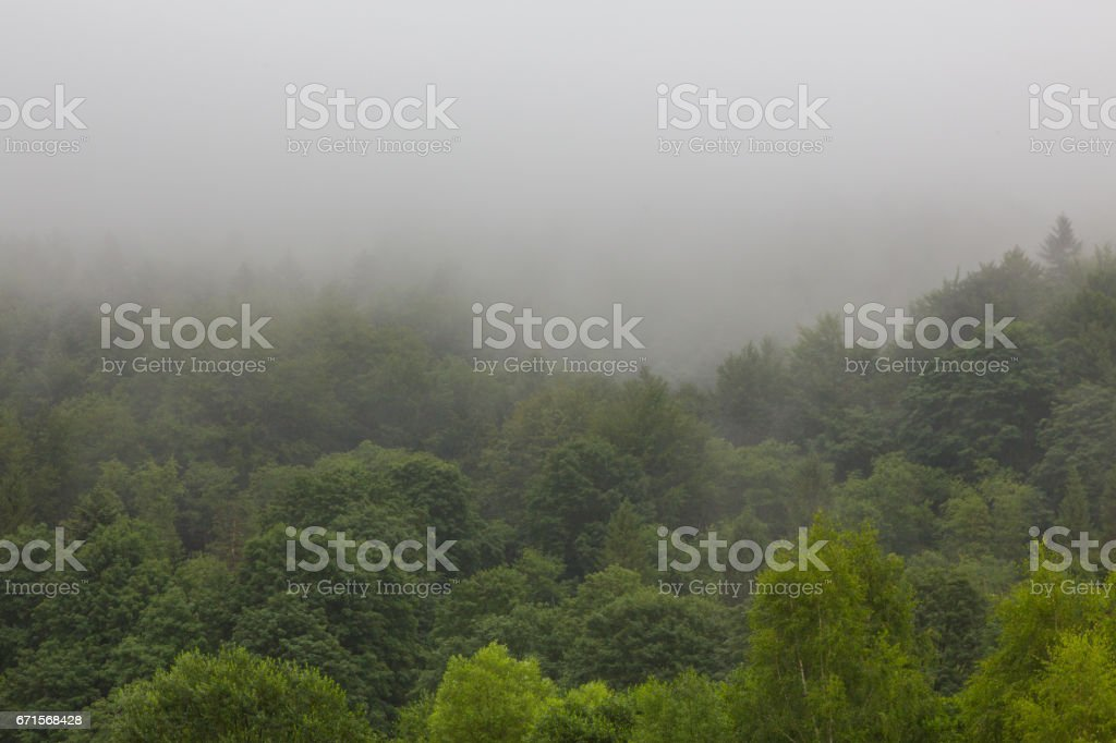 Summertime landscape of Bieszczady Mountain range with mist rain after stock photo