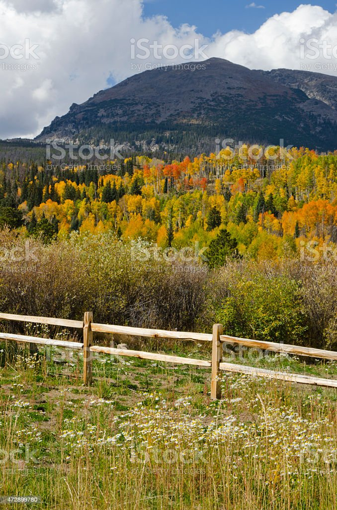 Summit County Autumn Colors on Buffalo Mountain stock photo