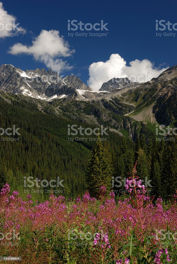 summit of rogers pass royalty-free stock photo