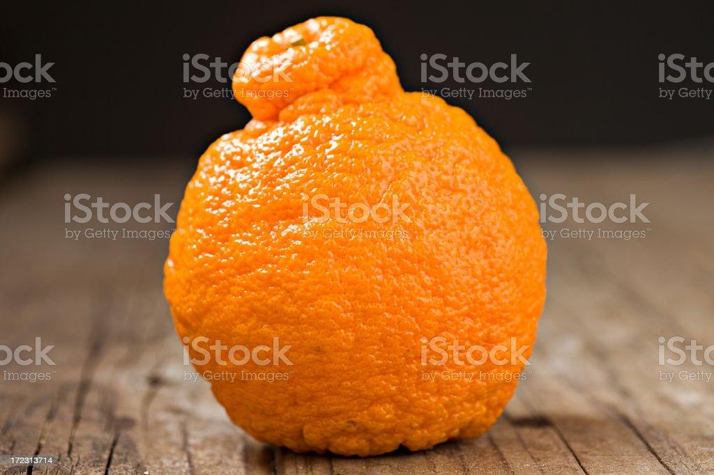 Sumo Orange stock photo