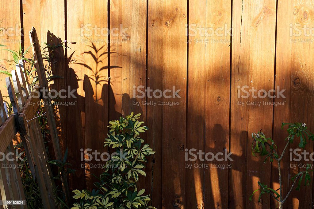 sun casting shadows on garden fence stock photo