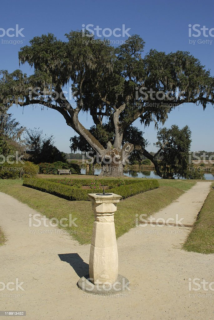 Sun dial and ancient oak at Middleton Place stock photo