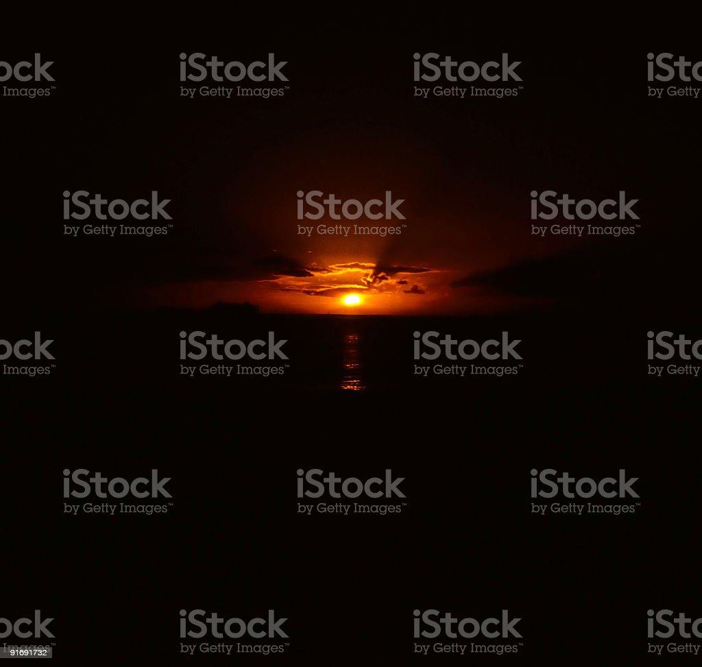 Sun Drops stock photo