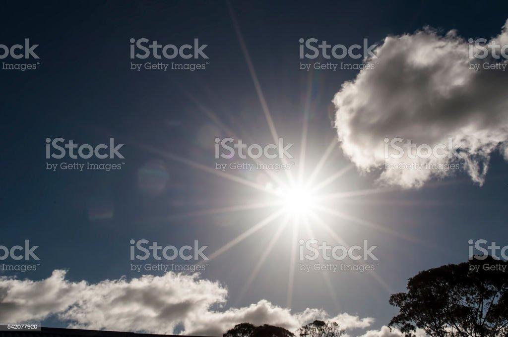 Sun flares stock photo