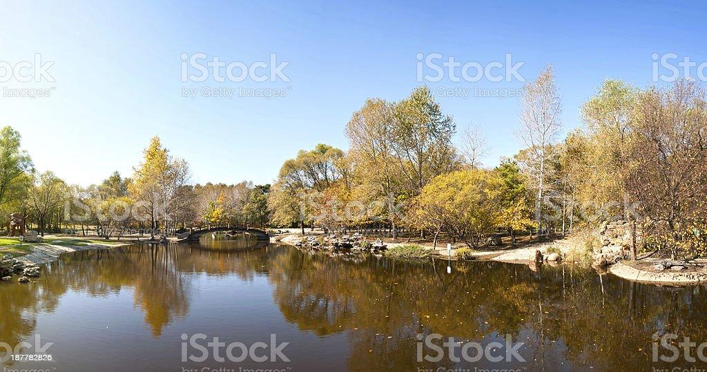 Sun Island Park in autumn stock photo