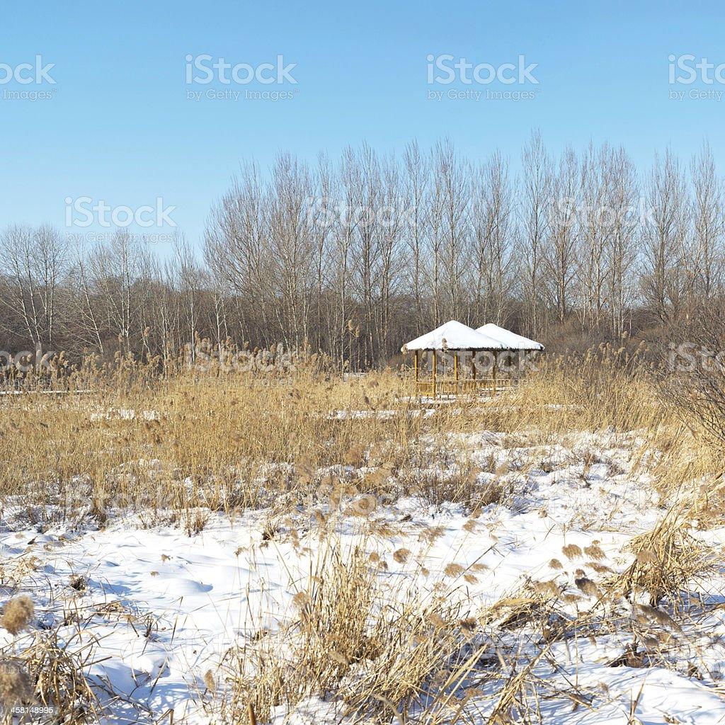 Sun Island Park in winter stock photo