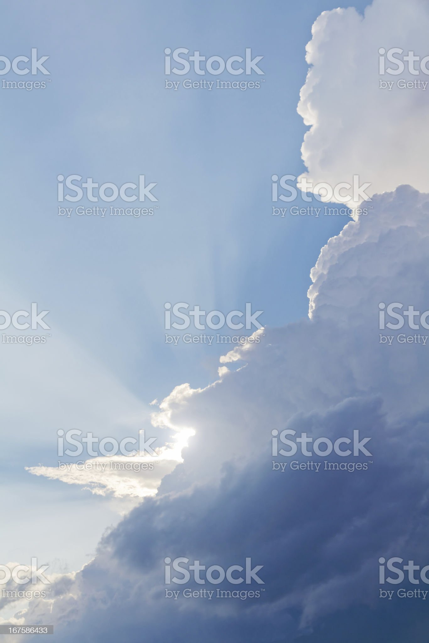 sun luch royalty-free stock photo