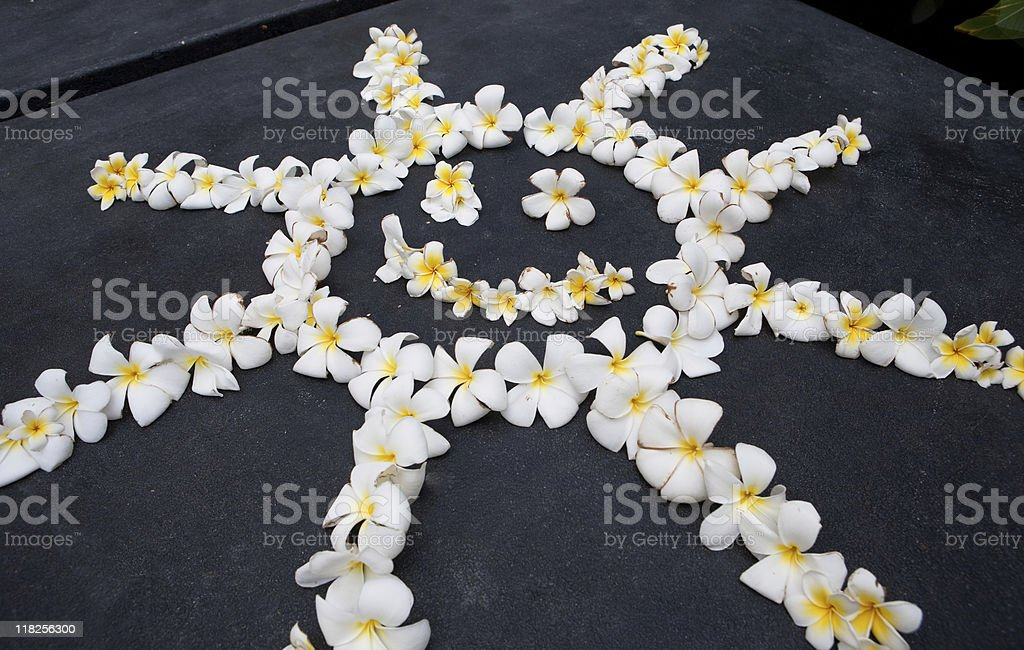 Sun made of flowers stock photo