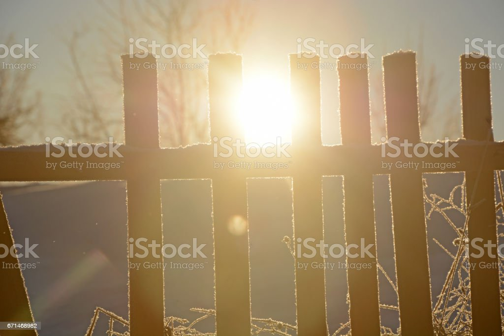 Sun, old wooden fence, winter forest in Russian backwoods stock photo