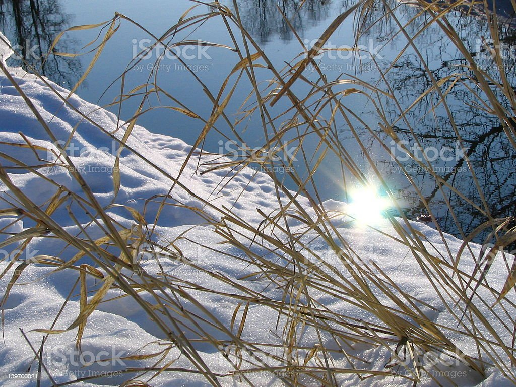 Sun on a water royalty-free stock photo