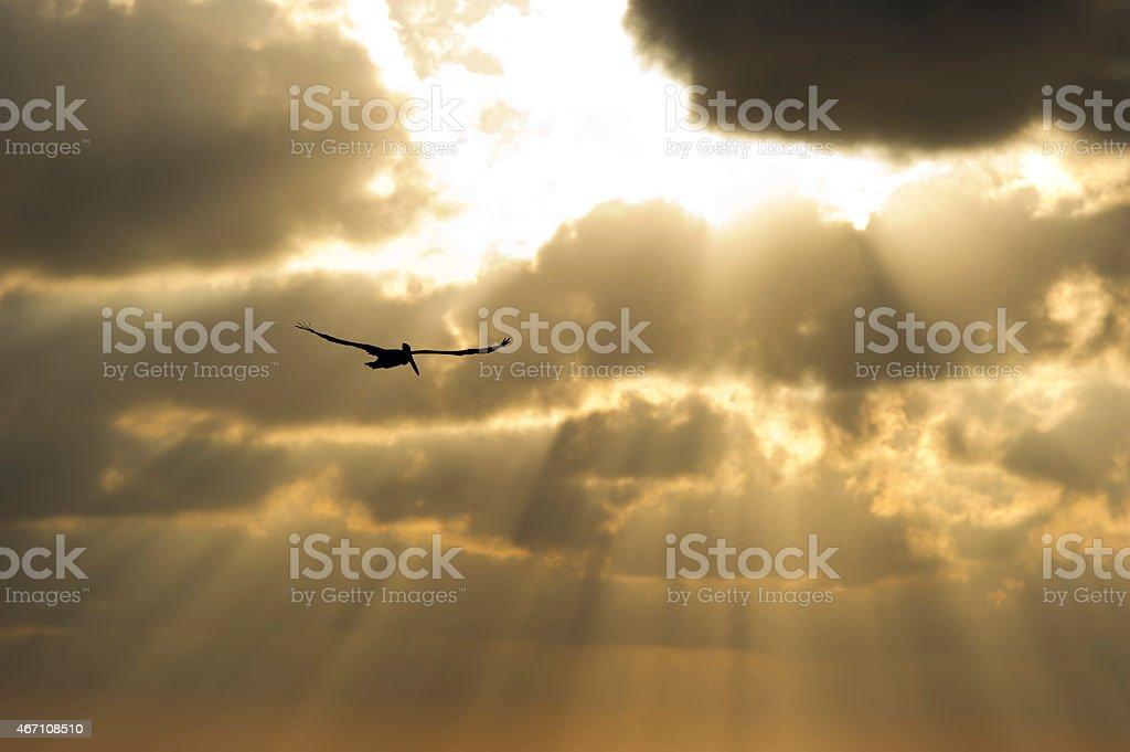Sun ray heaven stock photo