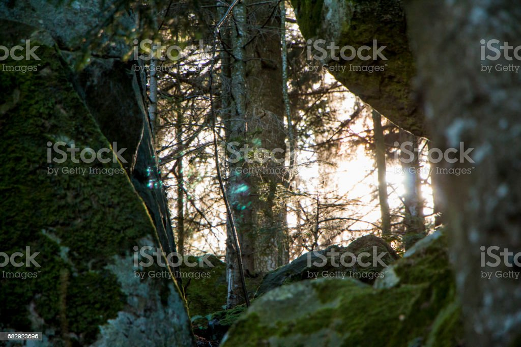 Sun rays stock photo