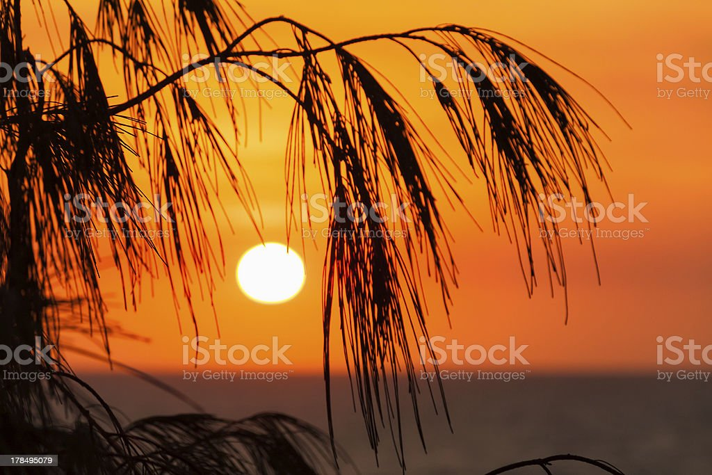 sun rising over Main Beach (Queensland, Australia) stock photo