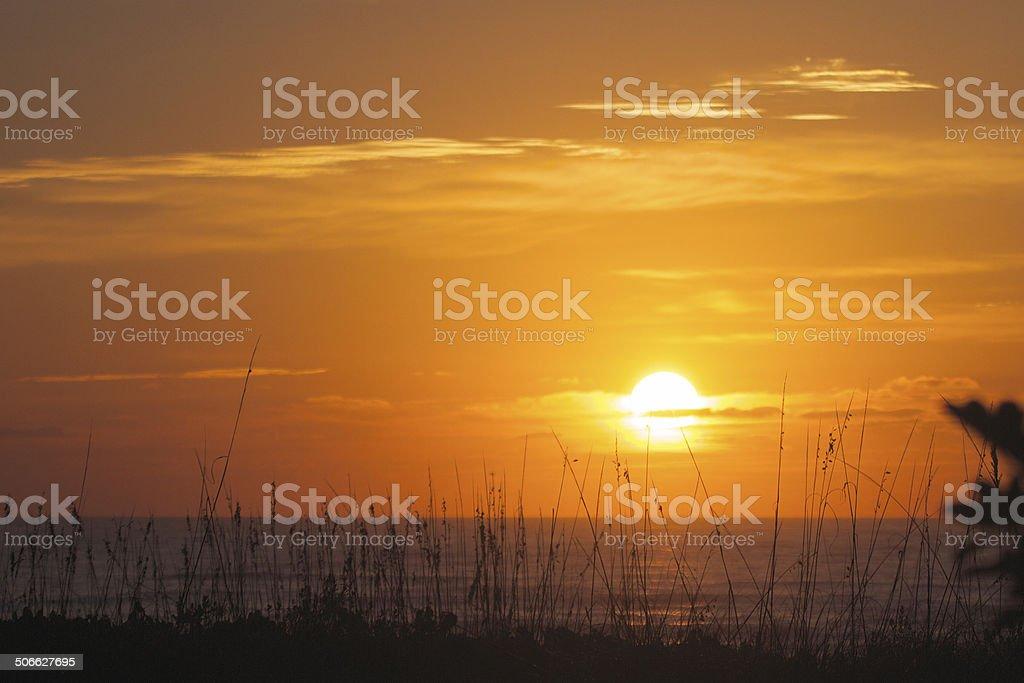 Sun Rising stock photo