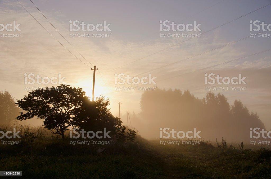 Sun rising through the fog on rural landscape stock photo