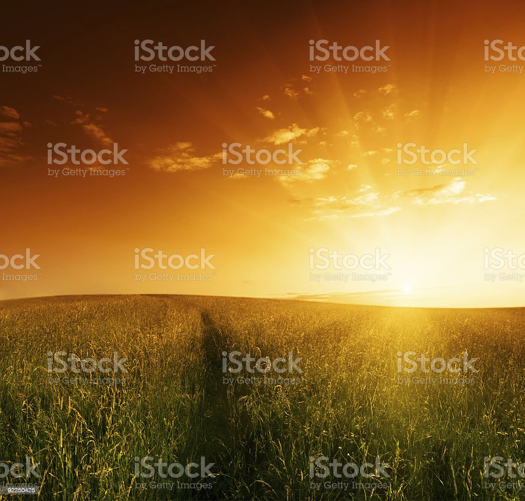 A sun setting over a field of grass royalty-free stock photo