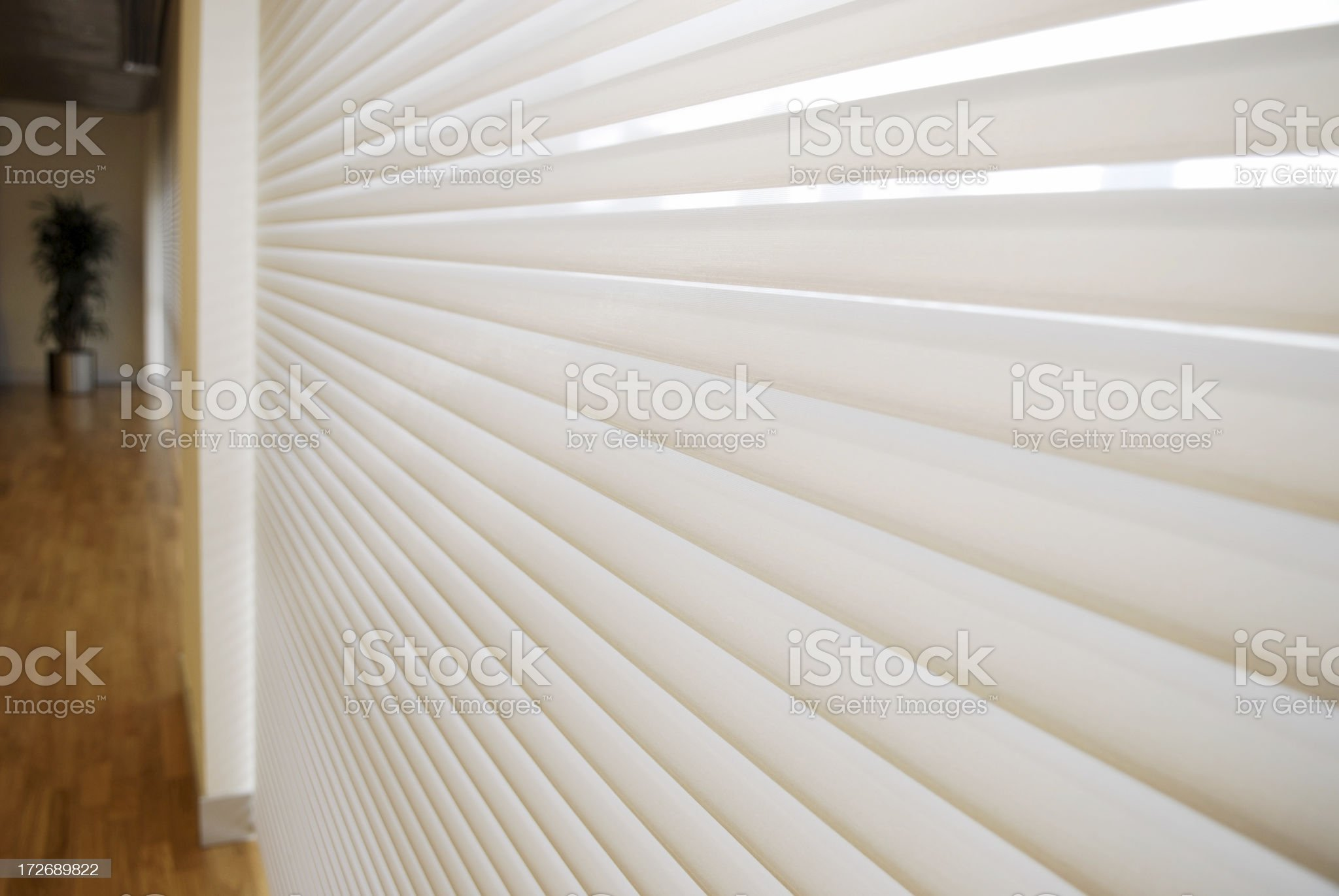 sun shine behind the shade royalty-free stock photo