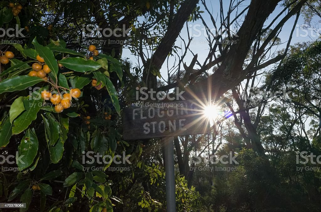 Sun Shining from Behind a Signboard stock photo