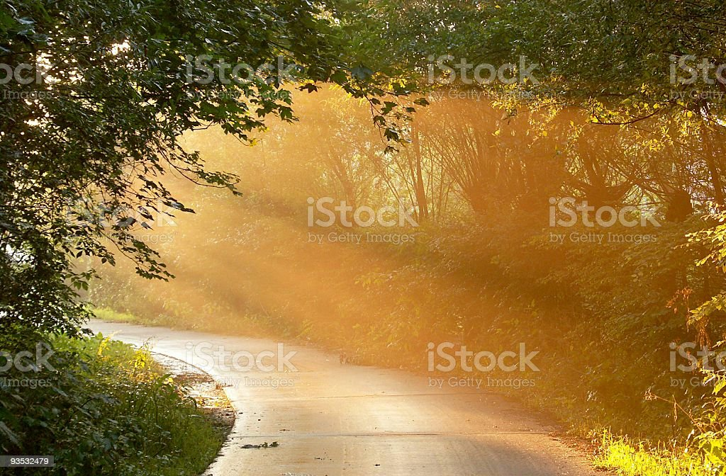 Sun shining through the trees at the end of the road stock photo