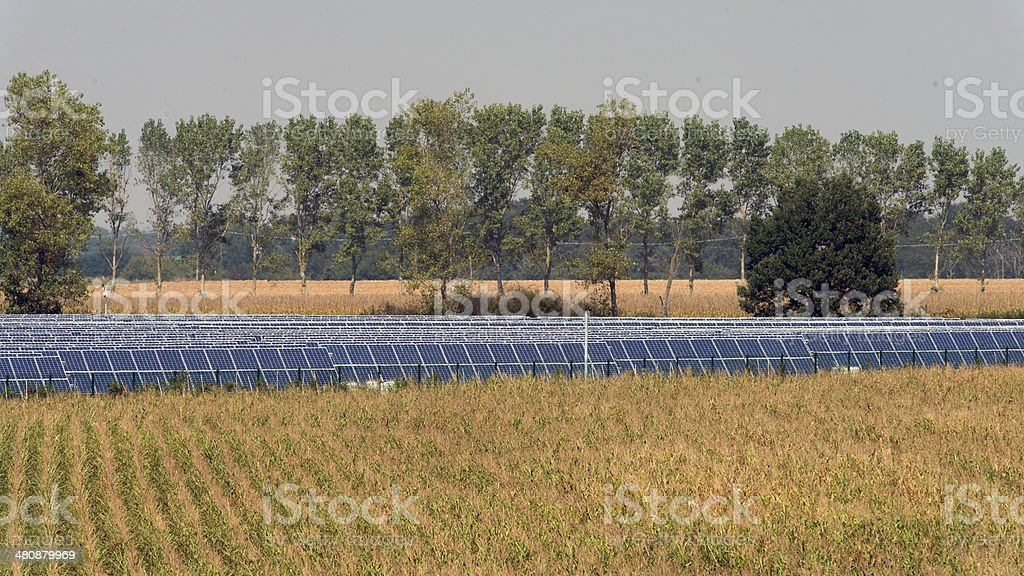 sun_energy royalty-free stock photo