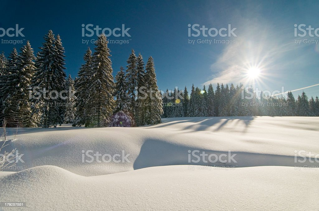 Sunbeam over a snowy landscape with trees in the background stock photo