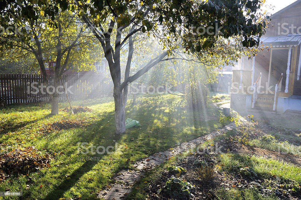 Sunbeams shine through autumn trees on a cottage garden royalty-free stock photo