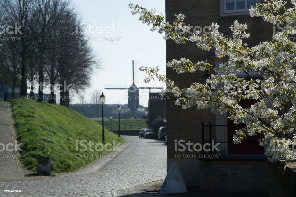 Sunday morning in Dutch village in spring season with wind mill stock photo