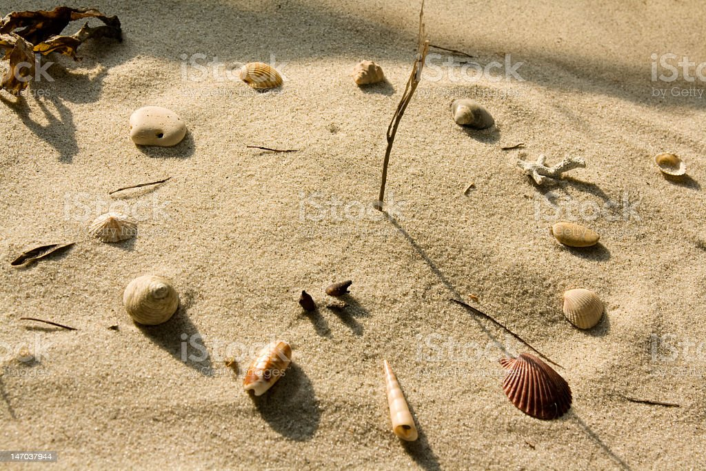 Sundial on a beach formed out of shells stock photo