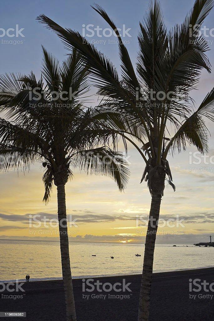 Sundown na praia foto de stock royalty-free