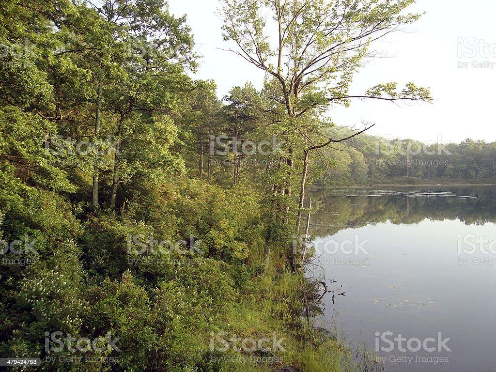 Sunfish Pond royalty-free stock photo