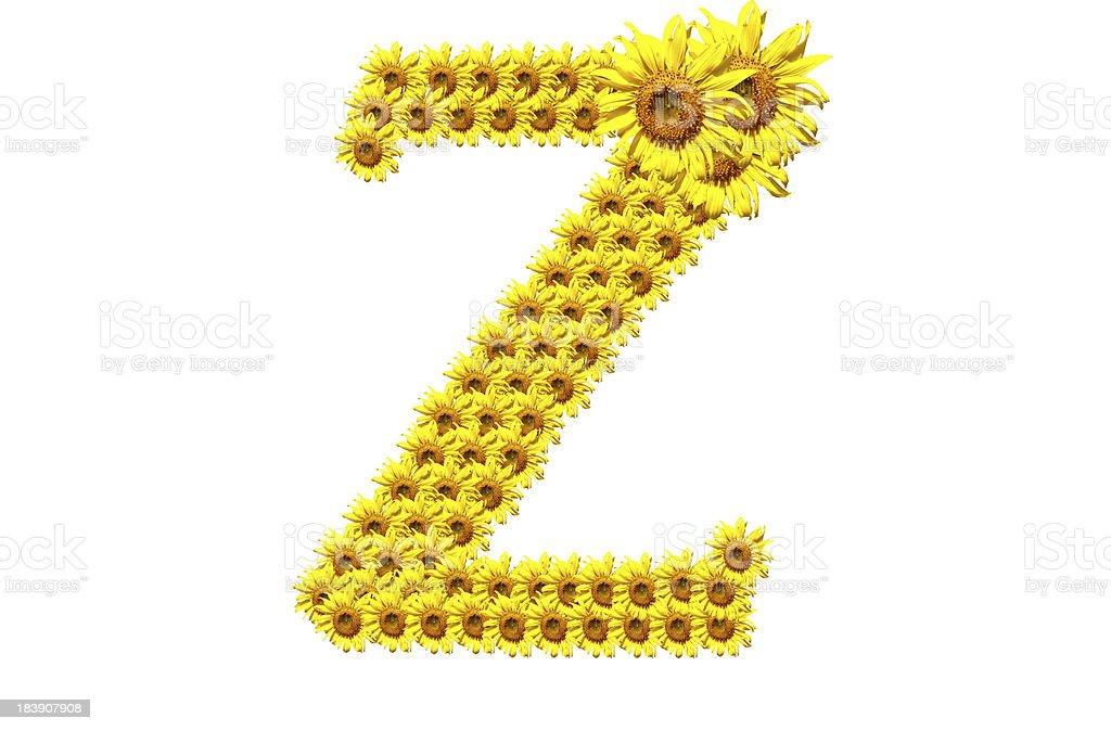 'Z' sunflower alphabet royalty-free stock photo