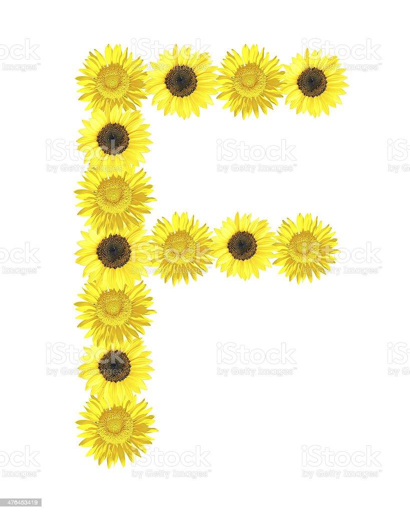Sunflower alphabet royalty-free stock photo