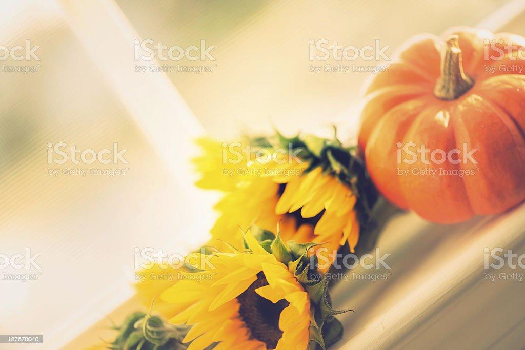 Sunflower and Pumpkin Arrangement royalty-free stock photo