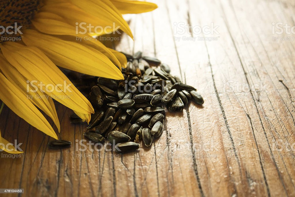 Sunflower and seeds on the wooden table royalty-free stock photo