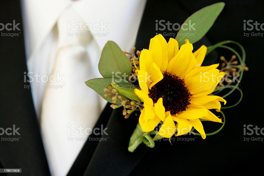Sunflower boutonniere stock photo