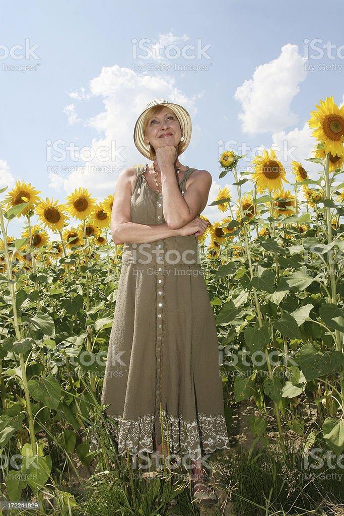 Sunflower dreamer royalty-free stock photo