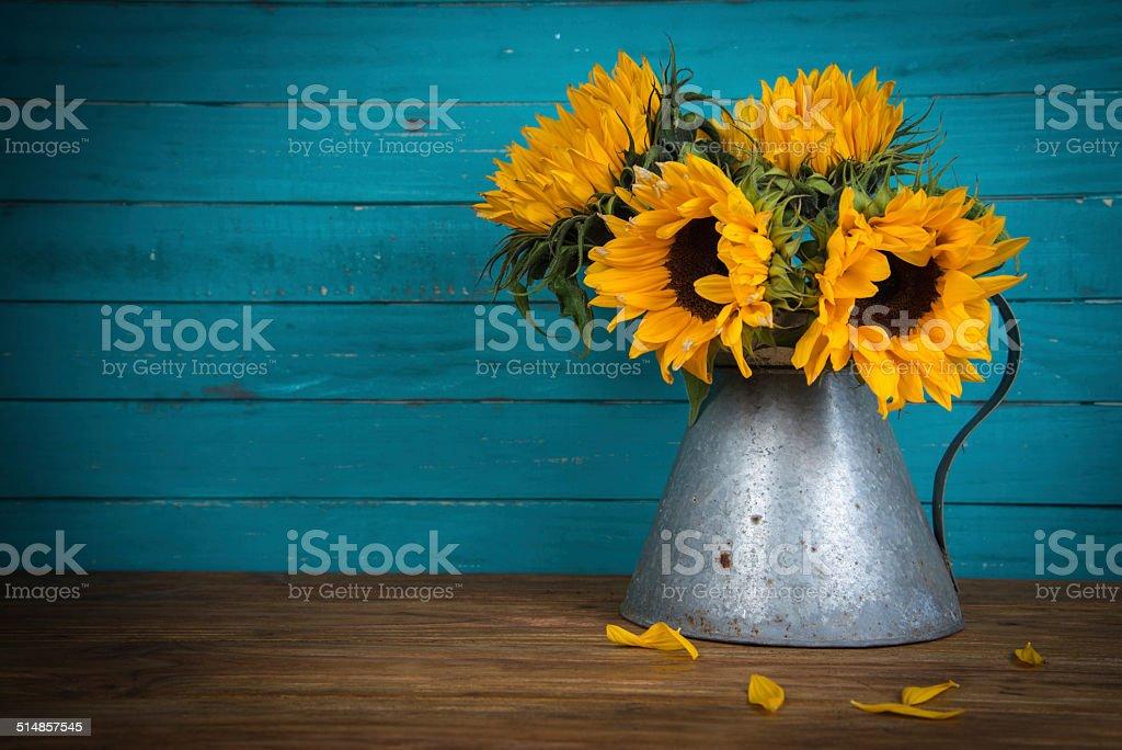 sunflower in metal vase stock photo
