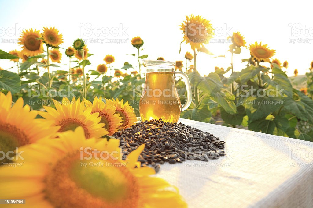 Sunflower seed oil royalty-free stock photo