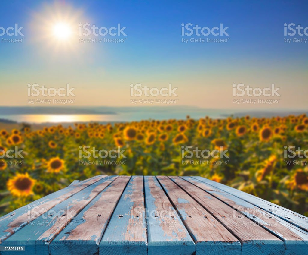 Sunflower seeds empty table stock photo