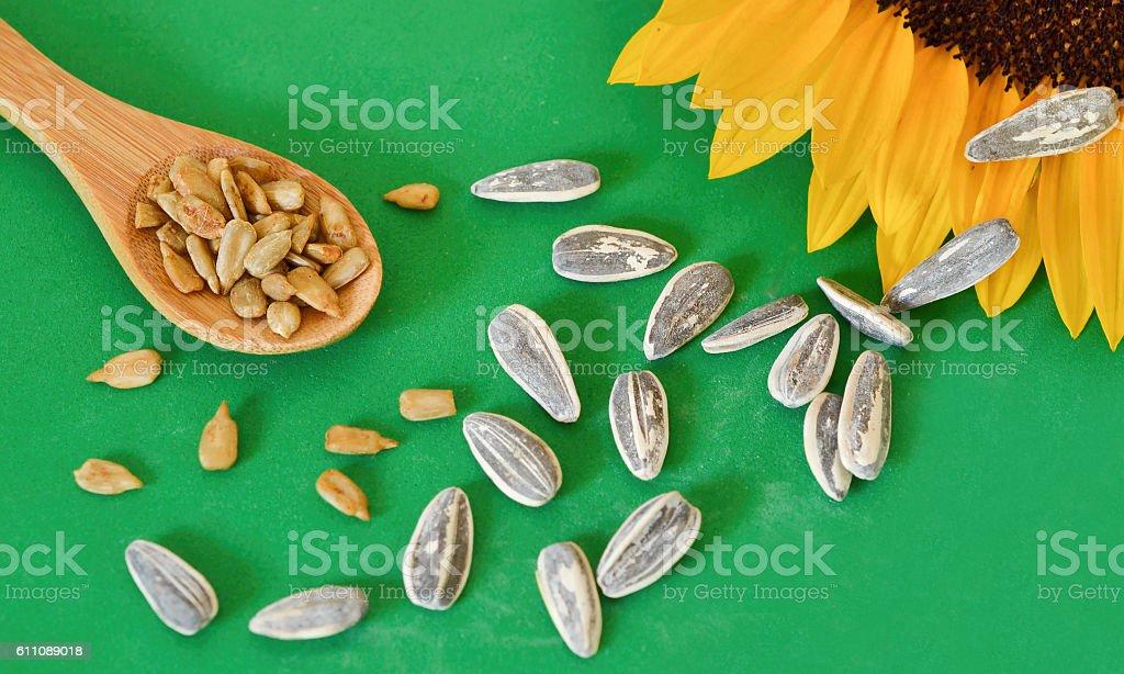 Sunflower seeds on green stock photo