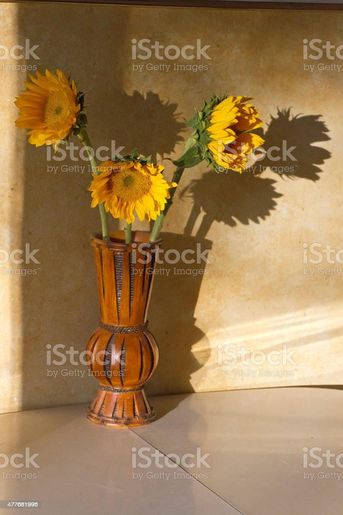Sunflower Shadows on a Yellow Wall stock photo