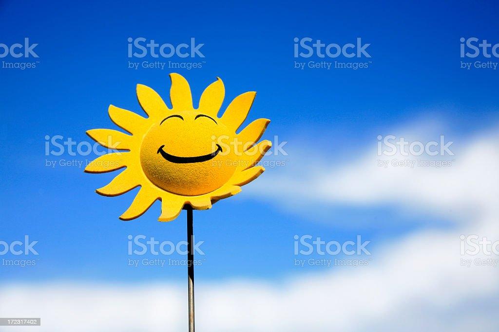 Sunflower smiley face stock photo