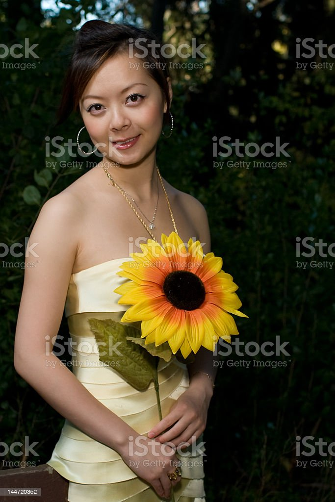 sunflower tale royalty-free stock photo