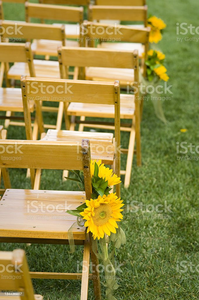 Sunflowers and Ribbons Decorations for Wedding Ceremony Chairs on Lawn royalty-free stock photo