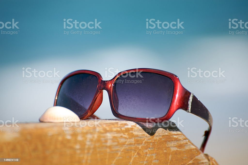 Sunglasses and shell by the ocean royalty-free stock photo