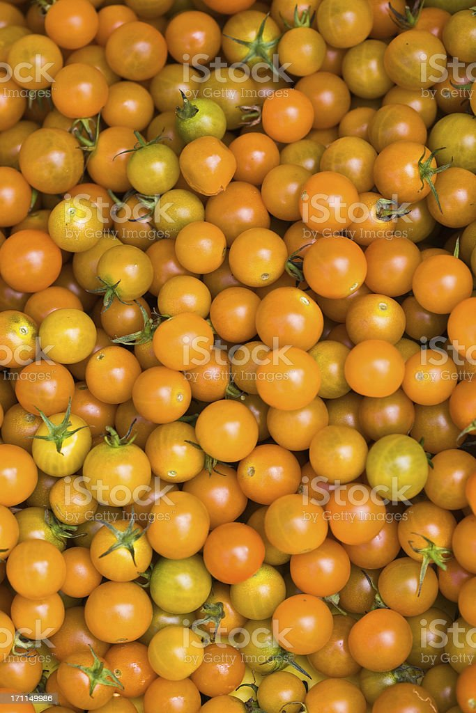 Sungold Cherry Tomatoes royalty-free stock photo