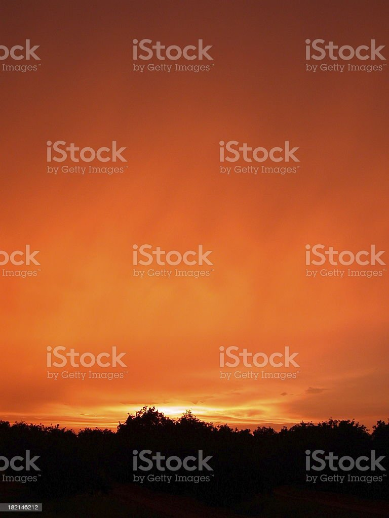 Sunkist Sunset royalty-free stock photo